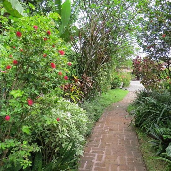 The Watergarden Bali - Garden View