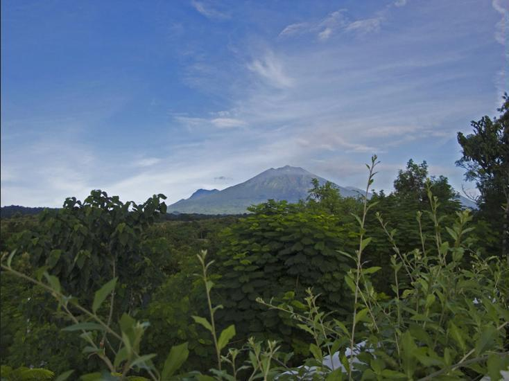 Bangsring Breeze Banyuwangi - Mountain View