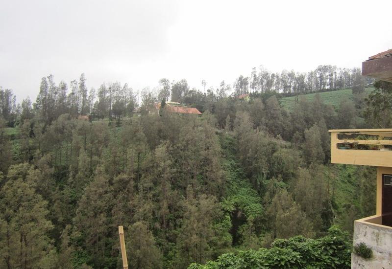 Homestay Tengger Asri 2 @Bromo Probolinggo - Pemandangan