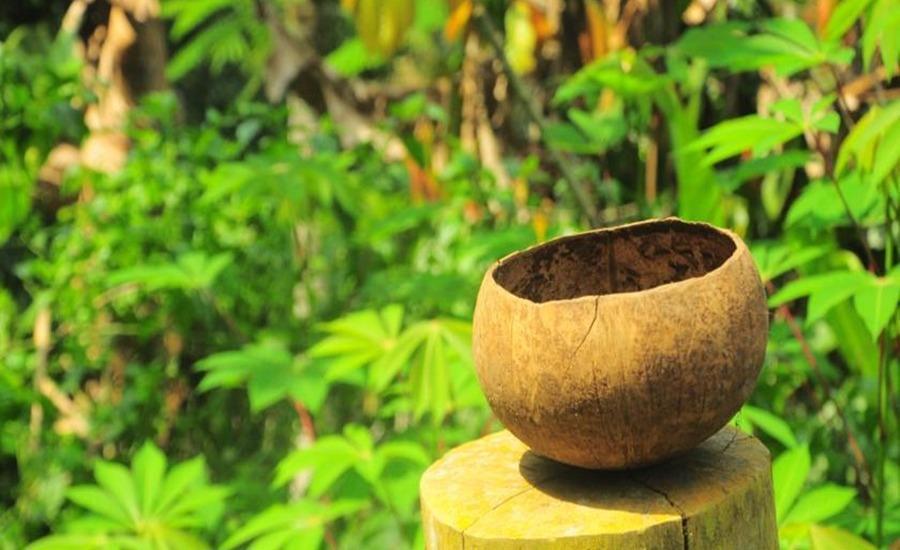 Loka Cita Eco Lodge Bali - Eksterior