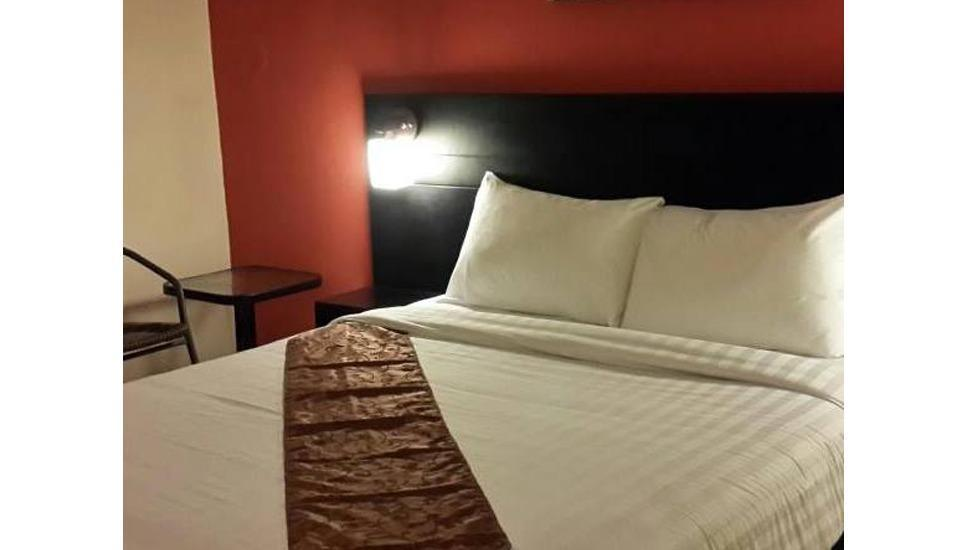 Budget Hotel Ambon - Guest Room