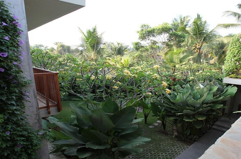 Ubud Wana Resort Bali - Wana Garden View Room BASIC DEAL
