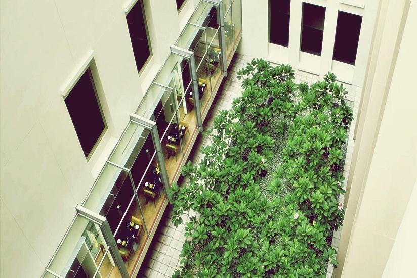 Hotel Alila Jakarta - Taman