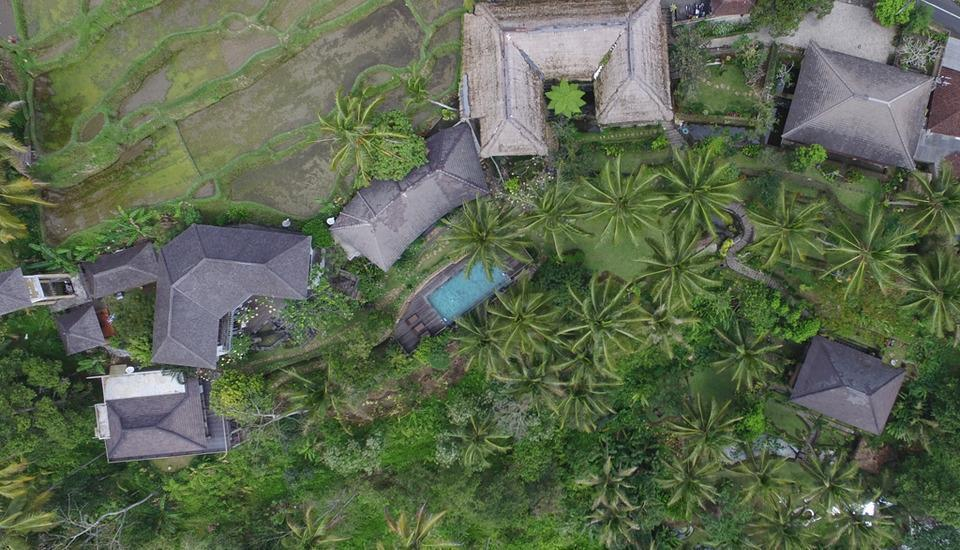 The Kampung Resort Ubud - TATA LETAK