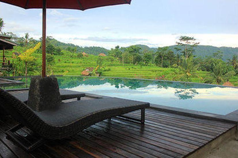 Sawah Indah Villa Bali - Infinity Pool