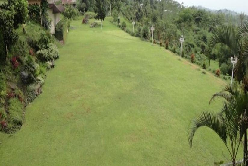 Queen Garden Hotel Purwokerto - Taman