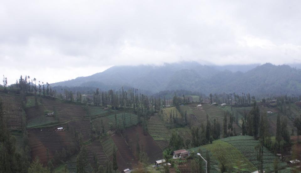 Homestay Ngadas Malang - 1