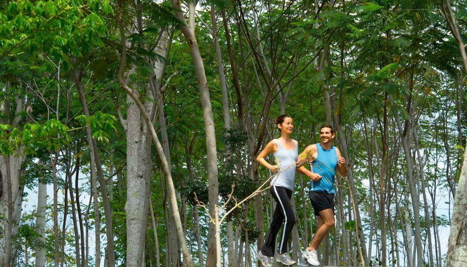 AYANA Resort and Spa, BALI - Jalur jogging