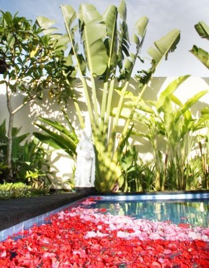 Villa Kurnia Bali - Kolam Renang