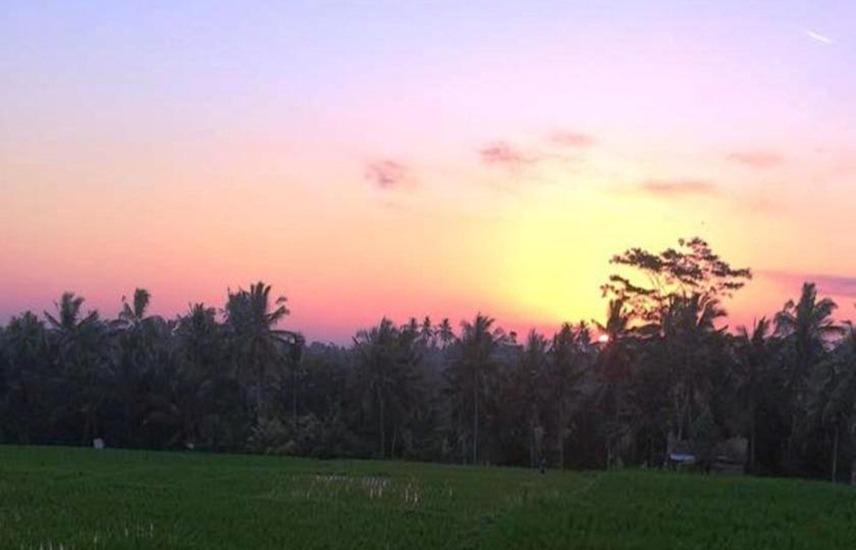 Uma Kutuh 2 Bali - Eksterior