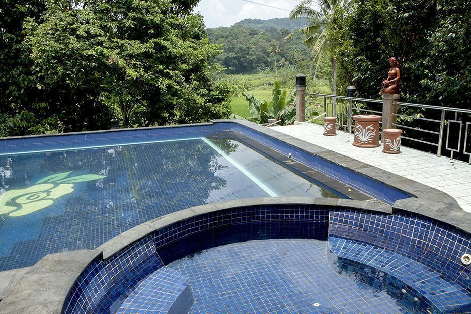 Villa Sawah Resort Managed by Salak Hospitality Bogor - Pool
