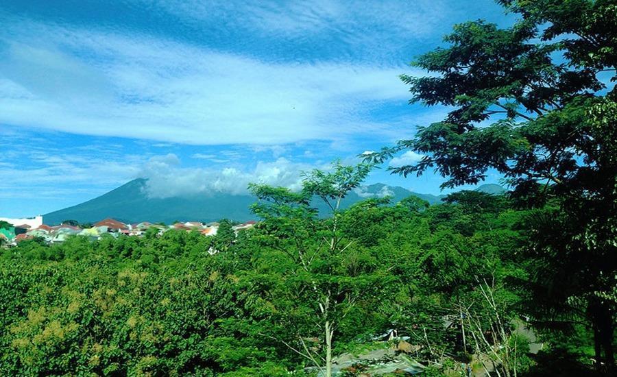 Ubud Cottages Malang Malang - Sekeliling