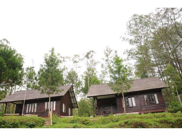 Cikole Resort Bandung - Rumah Surian Cemara