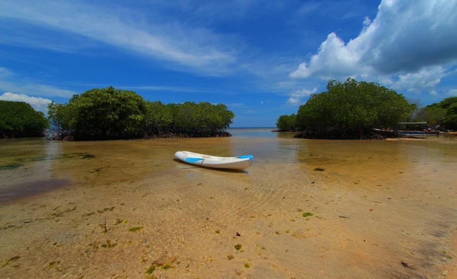 Pesona Mangrove Bungalow Lembongan - Pantai