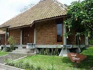 Disaster Oasis Yogyakarta - Rumah Timor Regular Plan
