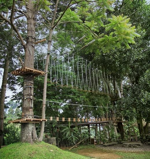 The Green Forest Resort Bandung - Hi-Rope