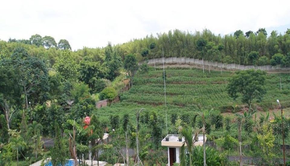 Rizen Kedaton Hotel Bogor - View