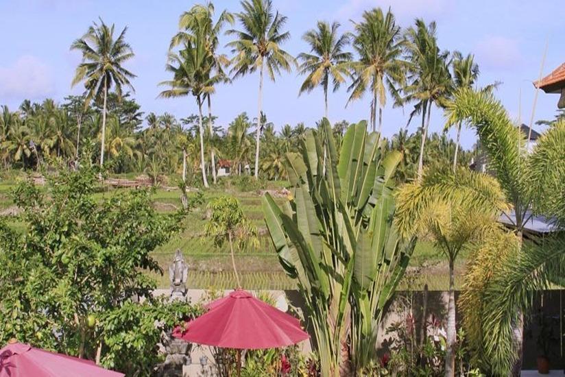 Nang Ade Ubud Villa Bali - Pemandangan
