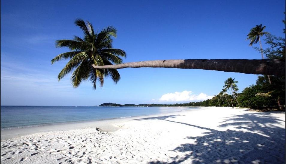 Indra Maya Villa Bintan - Beach