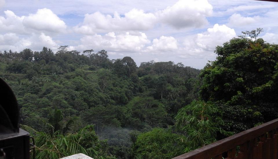Ashoka Tree Resort at Tanggayuda Bali - Valley view