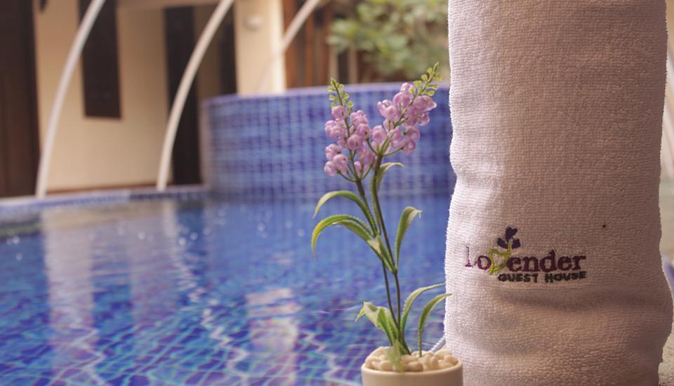 Lovender Guest House Malang - Kolam Renang