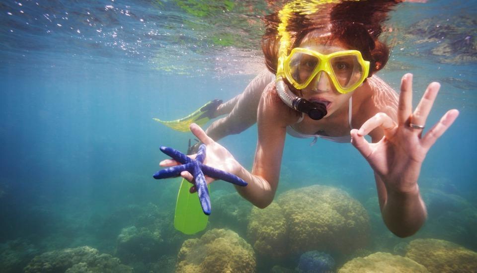 Green Coral Beach Camping Ground Tanjung Lesung Pandeglang - Snorkeling