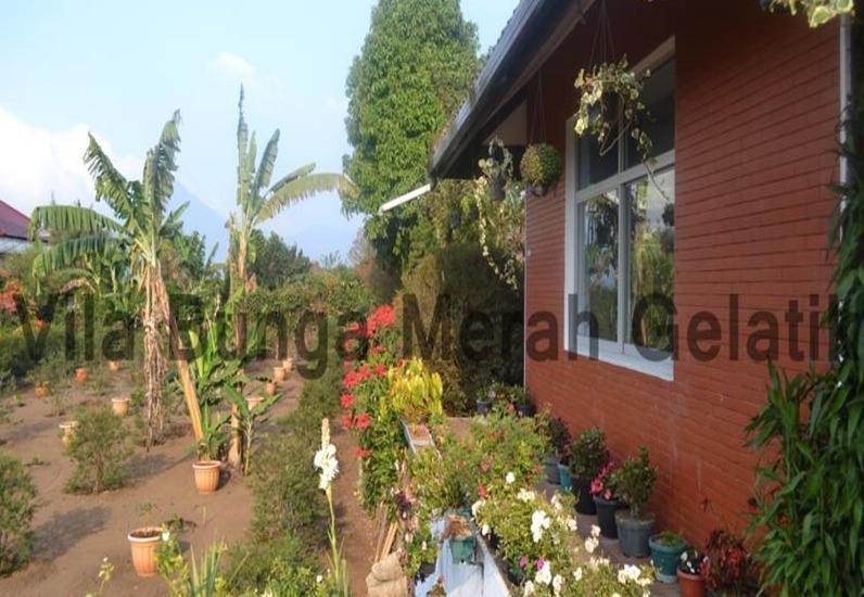 Villa Bunga Merah Gelatik Gelatik - Exterior