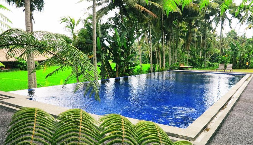 Tinggal Premium Resort Ubud Raya Pengosekan Bali - swimmingg Renang