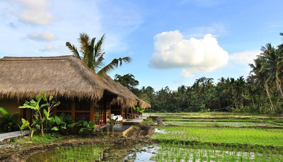 Tinggal Premium Resort Ubud Raya Pengosekan Bali - pemandangan