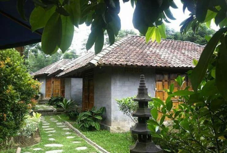 Sendangsari Bamboo Homestay Wonosobo - Exterior