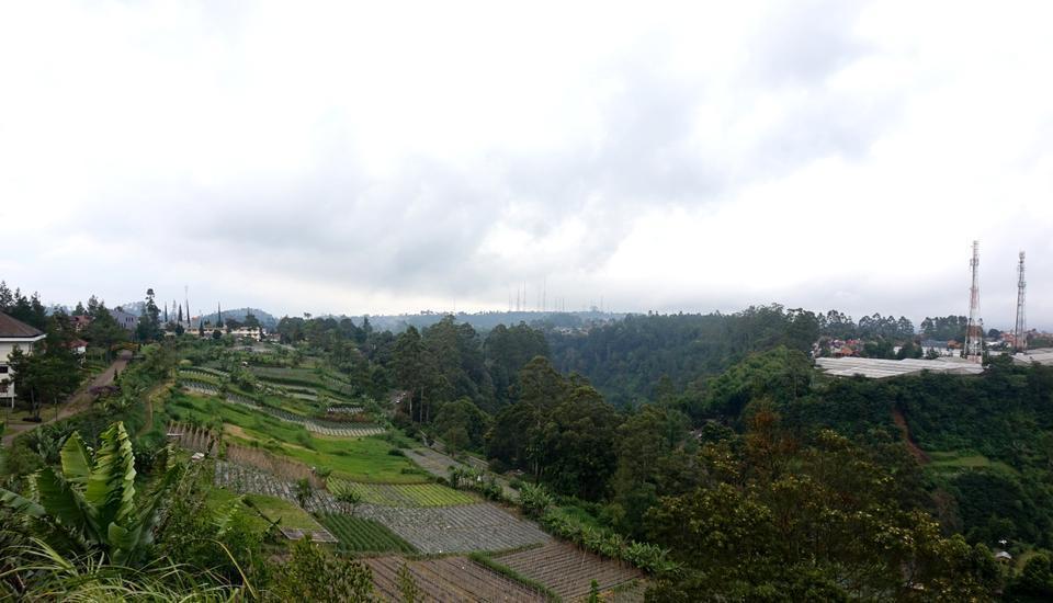 Villa Lavender Istana Bunga Lembang Bandung - View