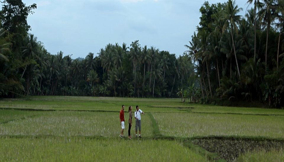 Plataran Borobudur Magelang - Pady Field