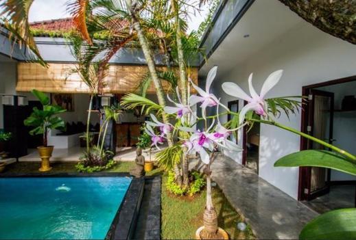 Villa Coco Drupadi Bali - Villa Coco Drupadi