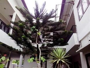 Sicla House Bali - Taman