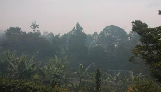 Villa Chamomile Lembang - PEMANDANGAN