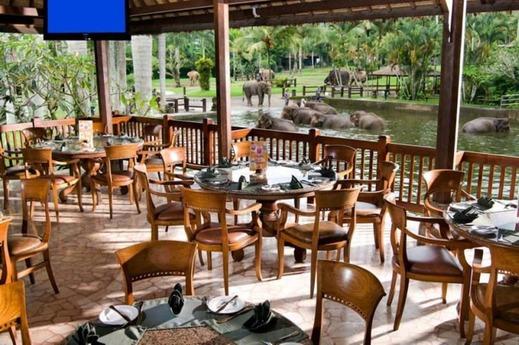 Elephant Safari Park Bali - Restaurant