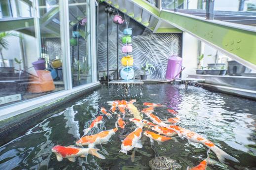 MaxOne Hotel Surabaya - 17092019