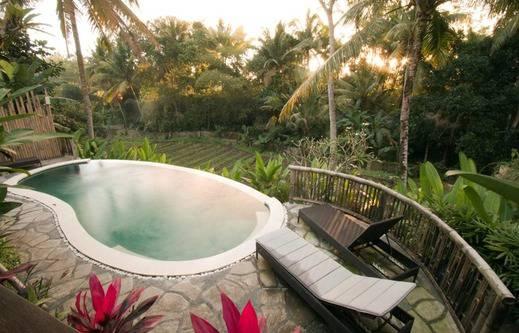 Lotus Villa Ubud - Kolam Renang