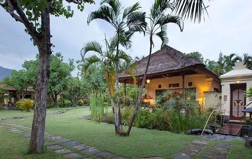 Taman Sari Bali Resort Bali - Bird (19/June/2014)