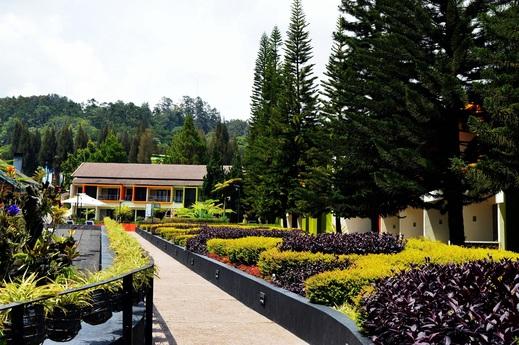 Mikie Holiday Resort Karo - Garden