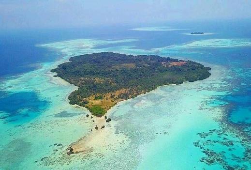 Gatosaken Pring near Beach Jepara - Island