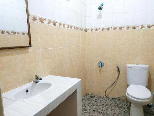 Lestari Homestay Bali - Bathroom