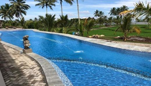 Grand Harvest Resort & Villas Banyuwangi - Pool