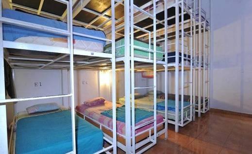 Bedbunkers Bali - Kamar tamu