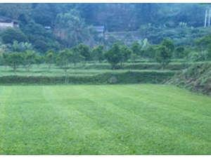 Saung Bilik Bandung -