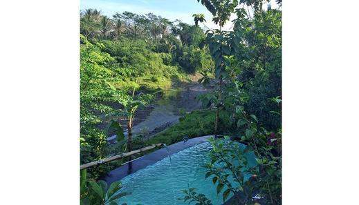 The Riverside Jogja Hotel Jogja - Pool View