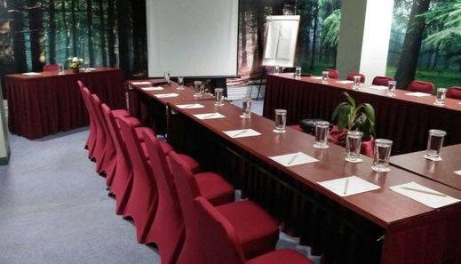 Riez Palace Hotel Tegal - Sabrina Meeting Room