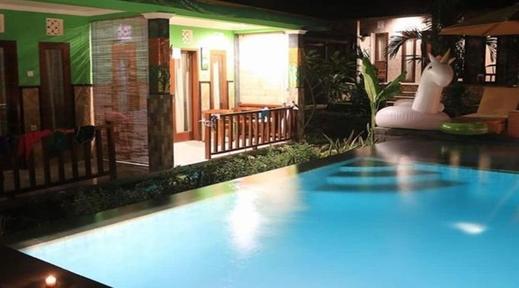 Reynold Artha Guest House Bali - pool