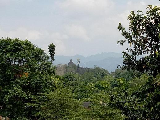 Ardian Borobudur Magelang - Surroundings