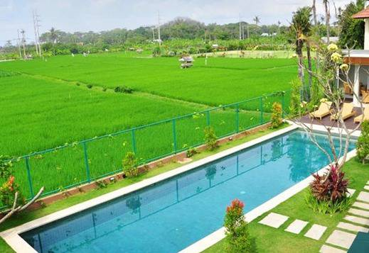 Tang Tu Beach Inn Villa Bali - Kolam Renang